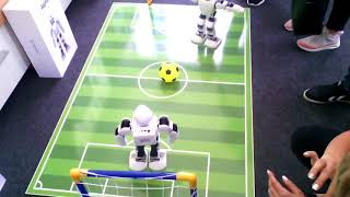 Football with Alpha 1S Humanoid Robots