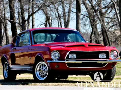 gas monkey shelby mustang - photo #31