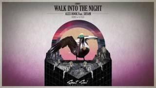 Alex Hook Feat Shyam Walk Into The Night Original Mix