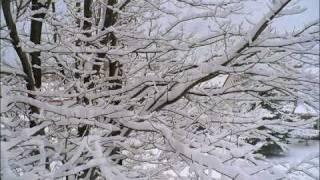 Chanson de Noel - Vive le Vent - Ginette Reno
