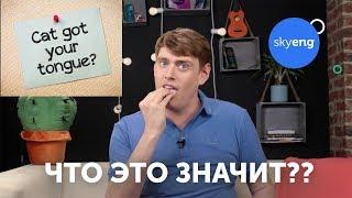Английские идиомы VS русские пословицы || Skyeng