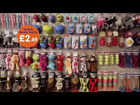 Barking Mad Bargains | B&M Bargains