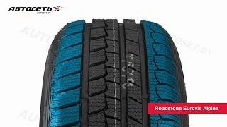 Обзор зимней шины Roadstone Eurovis Alpine ● Автосеть ●