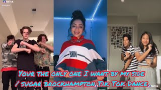 you re the only one I want by my side sugar BrockHampton Tik Tok Dance Compilation