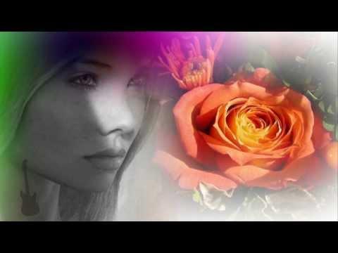 Die Rose - Angelika Milster