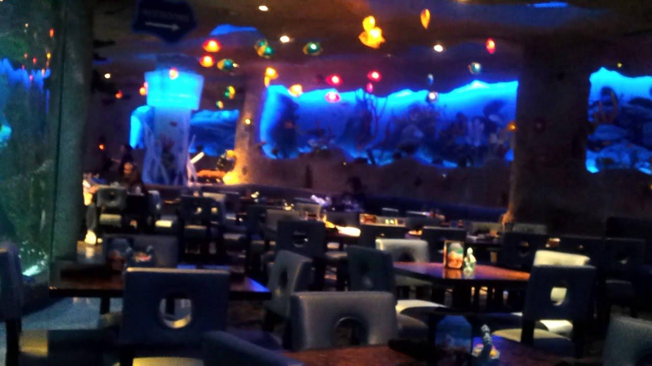 Aquarium Restaurant Nashville Tn Doovi