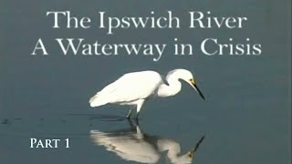 The Ipswich River: A Waterway In Crisis Part 1