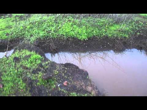 Ancient rainwater harvesting on Taleigao plateau-a tribal heritage