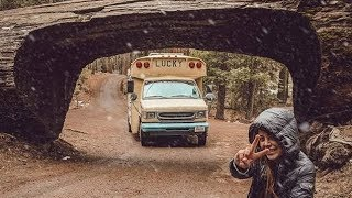 NATIONAL PARK VLOG // Lucky Bus in Sequoia & Kings Canyon