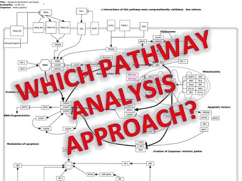 3 Approaches to Pathway Analysis