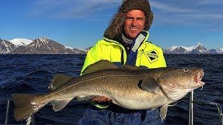 Lofoty 2018 - wyprawa do Norwegi na ryby ... dorszowate.