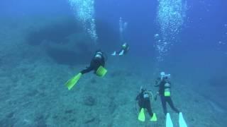 宮古島のダイビングの動画です。