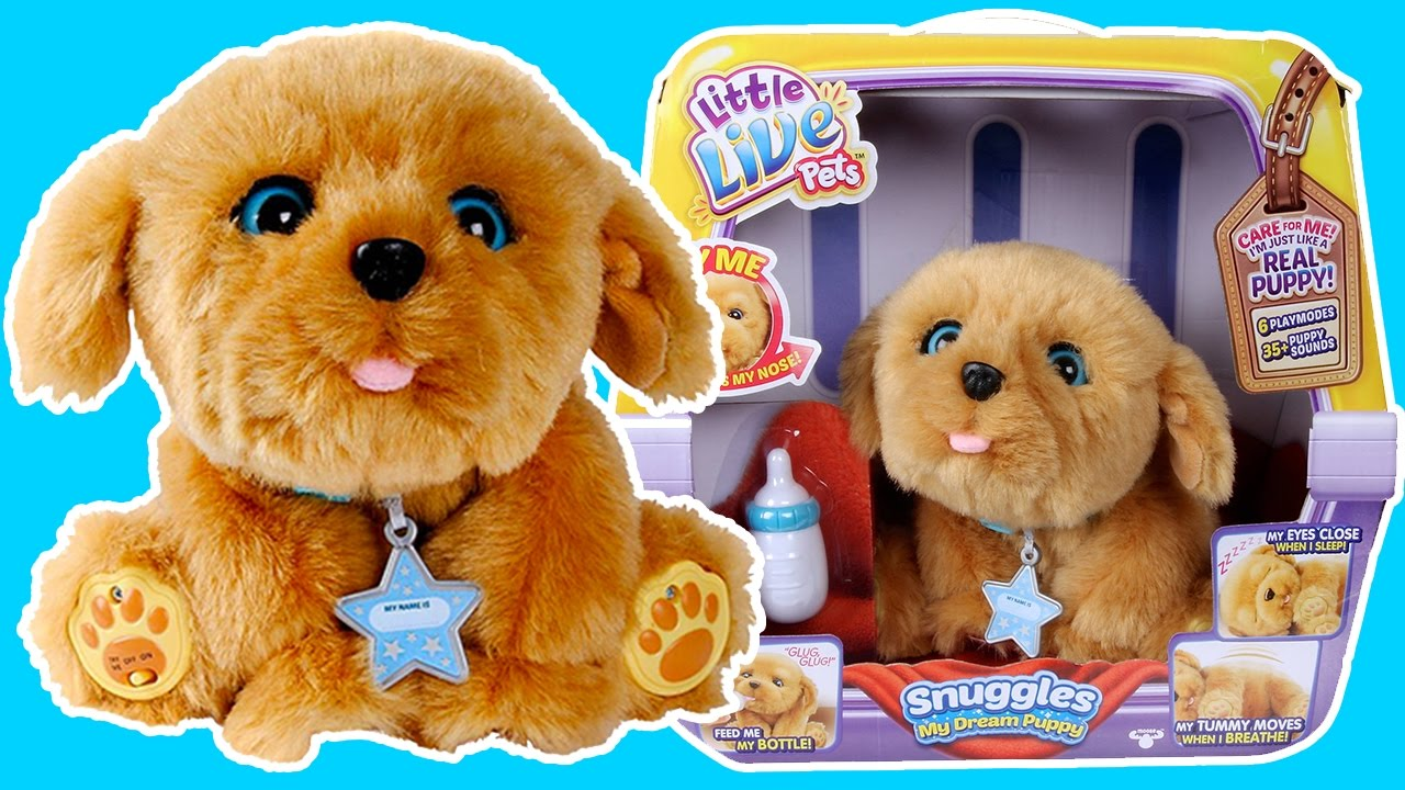 b145c166e242 Little Live Pet: Snuggles Unboxing 🎁😎Toys For Kids - Toy Team ...