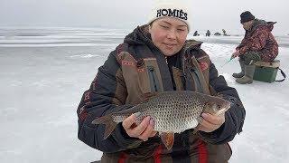 Нашли хорошую СОРОГУ и окуня Классная рыбалка по последнему льду