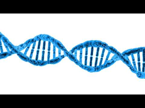 different types of DNA by RYUSERALOVER