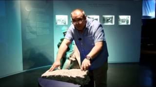 Задняя передача - Музей Michelin в Клемон-Ферран