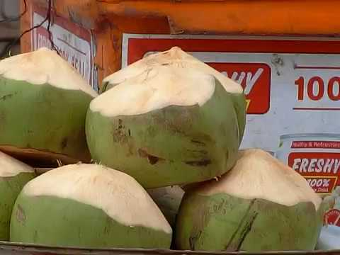 travelling in cambodia visiting coconut part 25
