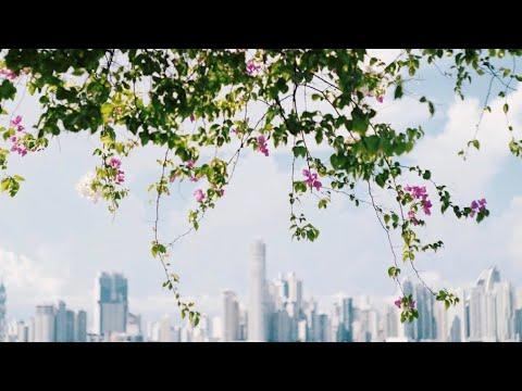 Panama Cinematic Travel Film