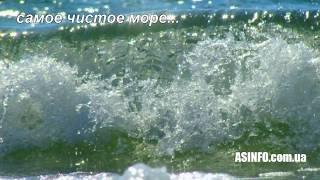 Кинбурнская коса отдых летом Кинбурн