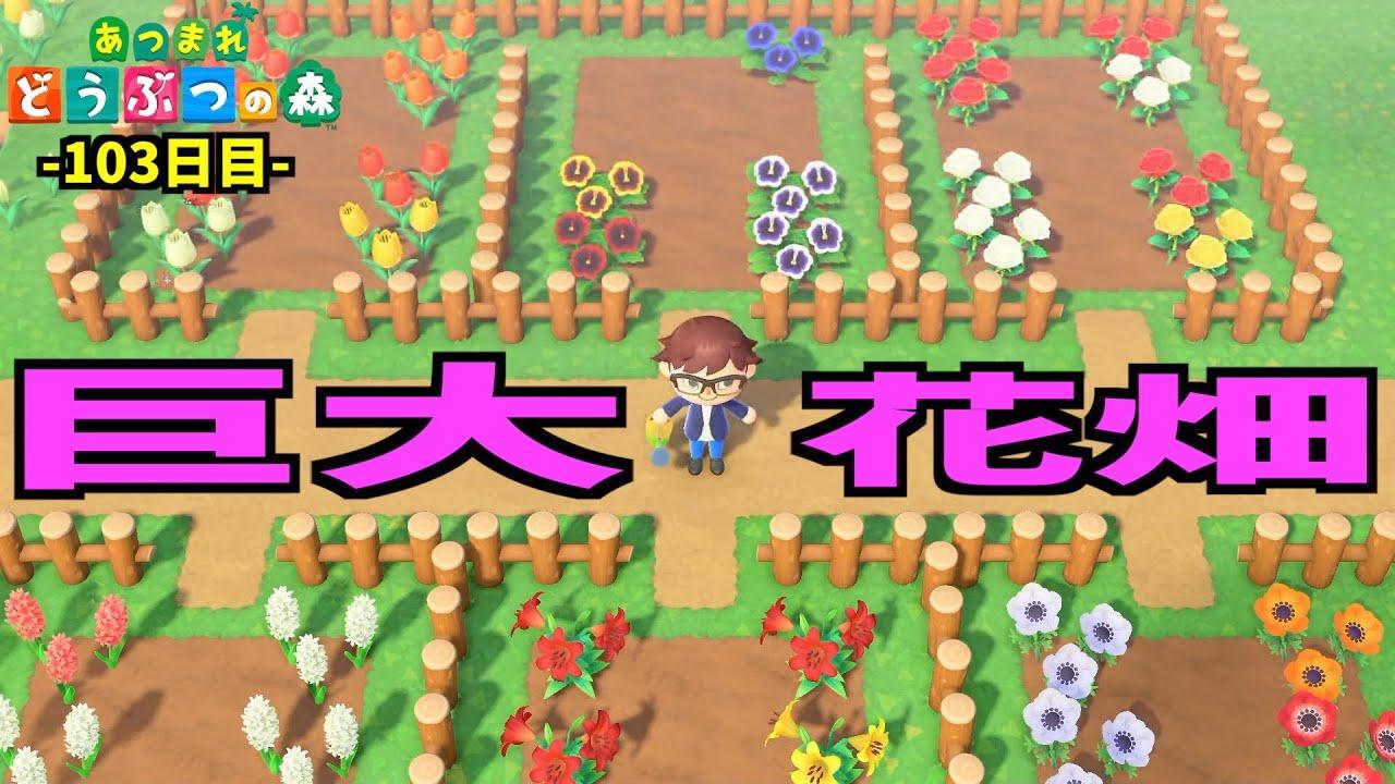 の あつ 森 交配 お花 【ポケ森】花の交配の組み合わせと水のやり方