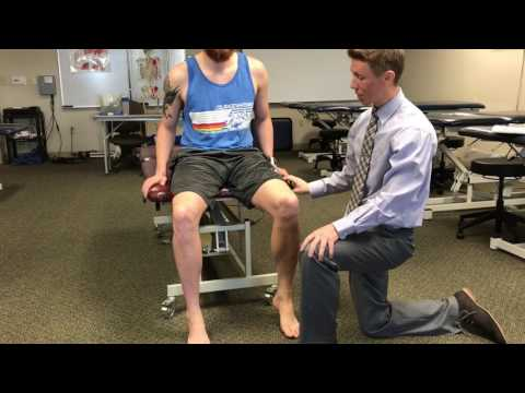 Sartorius Manual Muscle Test