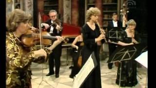 Bach Brandenburg Concerto No. 4 in G major, BWV 1049 mvt1 Allegro D°,N Harnoncourt