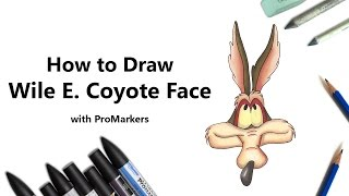 How to Draw and Color Wile E. Coyote Face with ProMarkers [Speed Drawing]