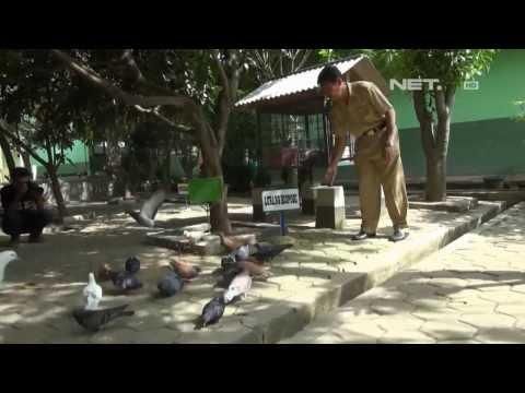 NET12 - Lahan SMKN 2 Bekasi diganti menjadi hutan kota Mp3