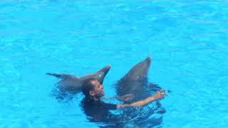 Тенерифе островная Испания Канары  Canary Islands Tenerife Spain