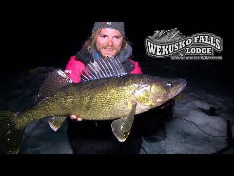 NightBite Walleye on NEW Baits - Wekusko Falls, Manitoba