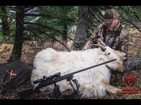 RECORD MOUNTAIN GOAT HUNT