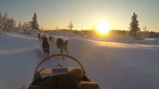 Lapland Ruka Kuusamo trip