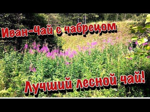 Иван-Чай с чабрецом (сбор,ферментация,сушка) 2019