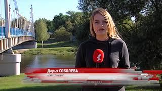 Конный бизнес в Ярославле: В мэрии назвали пять разрешенных мест для катания детей на лошадях