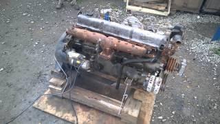 Запуск двигателя с замерами давления масла D6BR