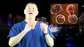 Stem Cell Therapy | stem cell mobilization gcsf