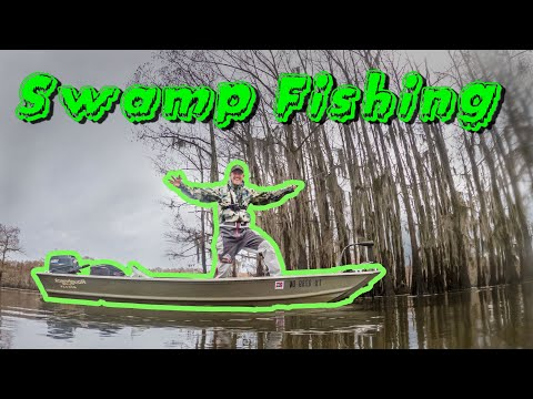 Swamp Fishing In My Jon Boat!