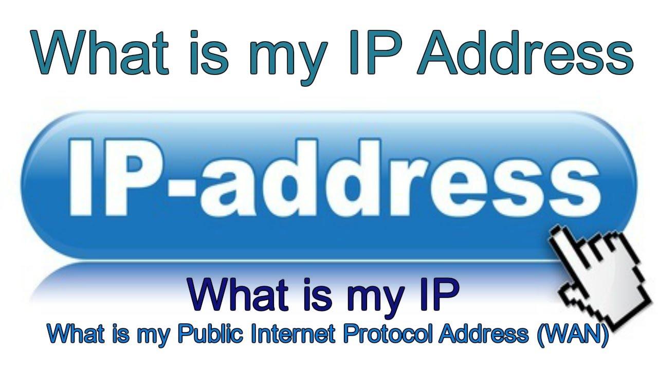 my 1p address