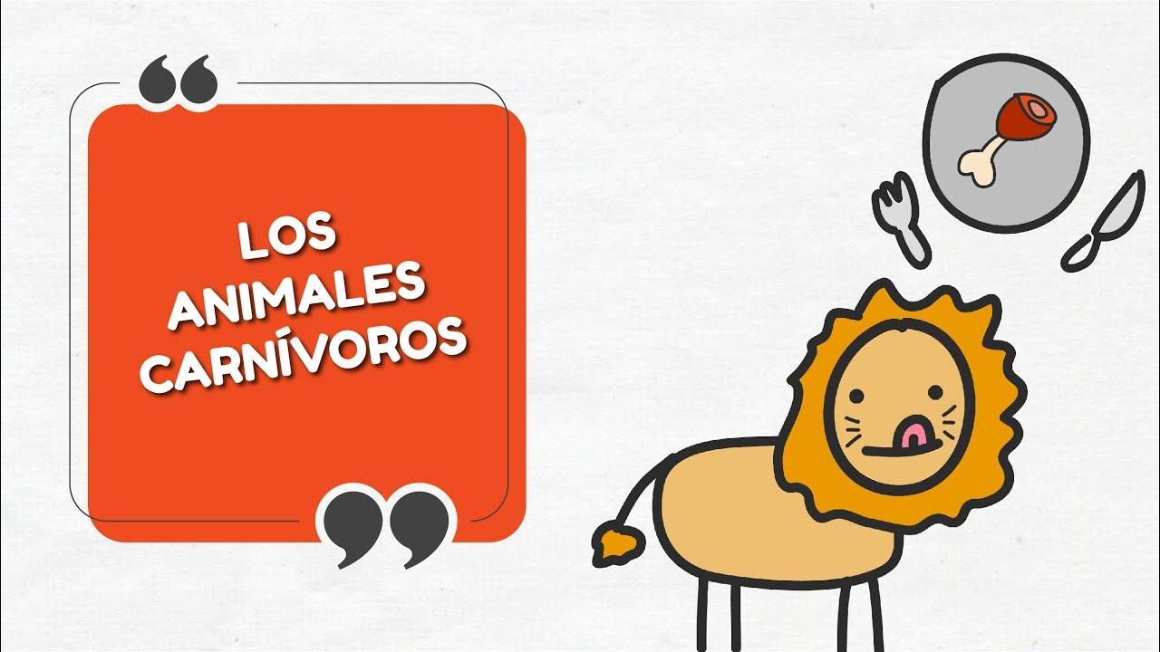 Los Animales Carnivoros Explicacion Sencilla Y Ejemplos E 7 T 0
