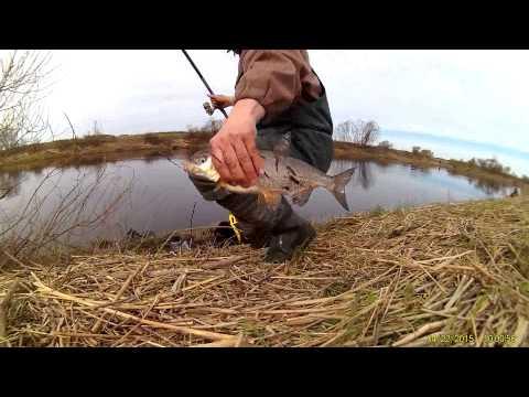 пруд русская рыбалка