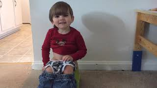 How to Potty Train 2 year olds