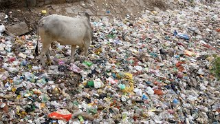 Still shot of Illegal dumping garbage site in India - environmental pollution concept