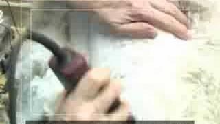 Standard Poodle Dog Grooming Severe Mats