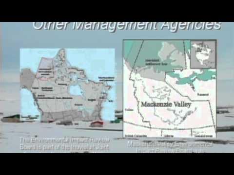 Cumulative Impact Assessment