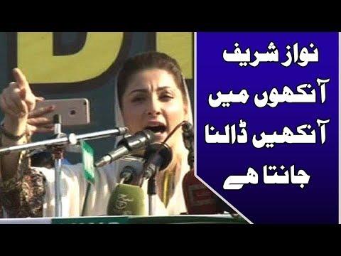 راولپنڈی والوں کے خون میں مسلم لیگ ن سے وفاداری ہے، مریم نواز