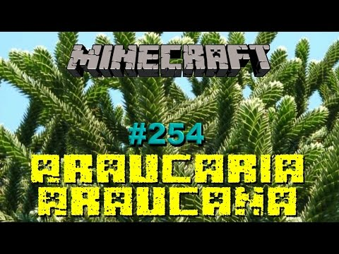 "Let´s Stream Minecraft #254 ""Araucaria Araucana"" [PS4][Schwer][Together]"