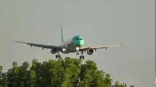 Airbus A321-231 UR-WRH WindRose landing at Borispol - Kiev - (UKBB / KBP)