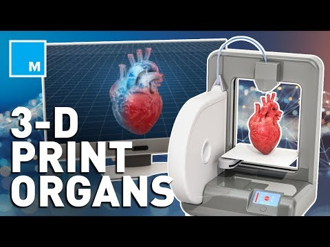 How Scientists Are 3D Bio-Printing Human Organs