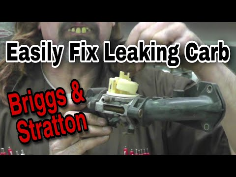 How-To fix a leaking Briggs carburetor - with Taryl