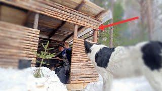 Лучшая таёжная уха Новый способ сушить РЫБУ Запасаюсь дровами Как просушить ЗЕМЛЯНКУ